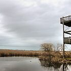 Winter marshy lookout by Erykah36