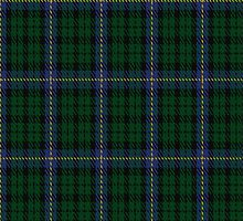 01244 Tunis Garden Fashion Tartan Fabric Print Iphone Case by Detnecs2013