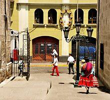 Calle de la Catedral by Alessandro Pinto