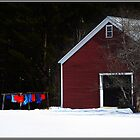 The Red Barn on Wash Day  by Wayne King