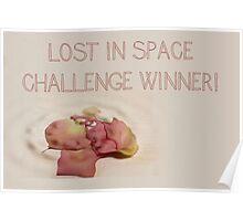 Banner - LIS - Challenge Winner Poster