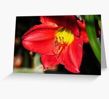 PS3-6-61470 Greeting Card