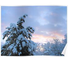 Snowy March Sunrise Poster
