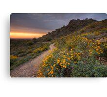 Following the Trail Home Canvas Print