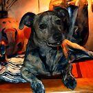 Pit Wiener aka PW by michaelasamples