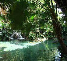Polynesian by schermer
