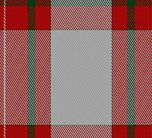 01271 Hooper in the Dell Fashion Tartan Fabric Print Iphone Case by Detnecs2013