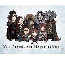 (Book 5 SPOILERS) Stark Family Portrait Photographic Print
