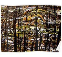 scorched reeds.... scarred river Poster
