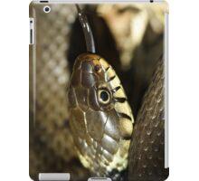 Grass snake, in the sun iPad Case/Skin