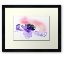 Fragile dancer... Framed Print