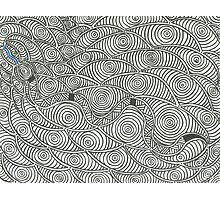 Dhuyu Baganbagan (Striped Snake) Photographic Print