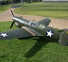P40F Warhawk by Shaun O'Malley