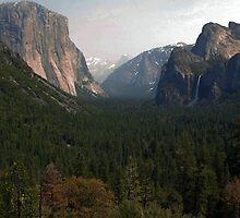 Yosemite National Park by DrStantzJr