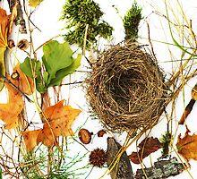 Bird Nest In Forest Arrangement by Arteffecting