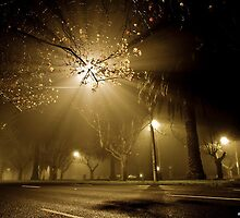 One foggy morning... by Eko Julianto by Shot in the Heart of Melbourne, 2013