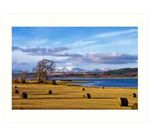 The Beauly Firth and Ben Wyvis Art Print