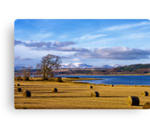 The Beauly Firth and Ben Wyvis Canvas Print
