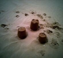 paw print and sandcastles by davidte1968