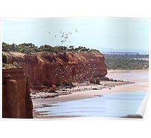 Ardrossan Cliffs. Poster