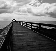 The Pier by Tracey McQuain