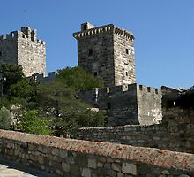 Castle of St. Peter in Bodrum by Jens Helmstedt