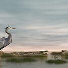 Blue Heron by Walter Colvin