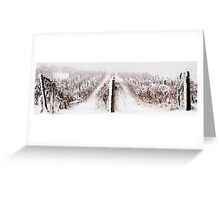 Winter Vineyard Greeting Card