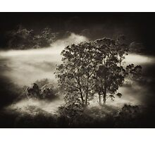 Carpeted Mist.. Photographic Print