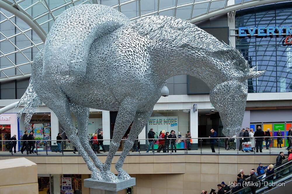 The strange horse by John (Mike)  Dobson