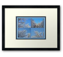 St. Valentine's Day Snowstorm Framed Print