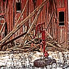 Old barn and pump by cherylc1