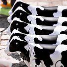 Nga Trang Cows by salsbells69