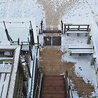 Snow Track by vonb