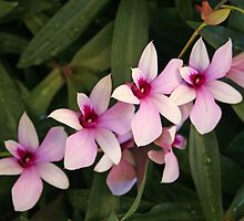 """Day 86 