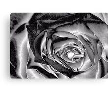 Sterling Rose Canvas Print
