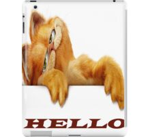 Garfield for ipad  iPad Case/Skin