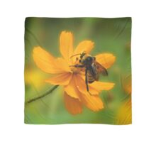 Bumble Bee Busy Scarf