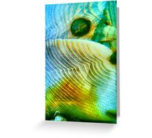Baby Bird In Folded Wings (macro abstract) Greeting Card
