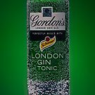 Gin & Tonic by Mick Frank