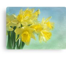 spring cheerfulness Canvas Print