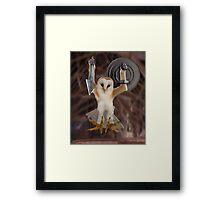Spartan Gibbon Owl Framed Print
