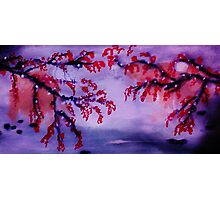 Chinese painting , Blossoms over water, watercolor Photographic Print