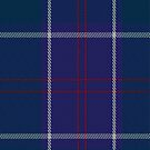 01318 US Navy Edzell Tartan Fabric Print Iphone Case by Detnecs2013
