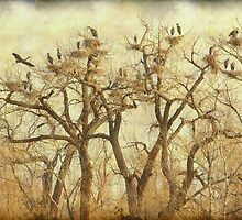 Thats A Lot Of Great Blue Heron by Bo Insogna