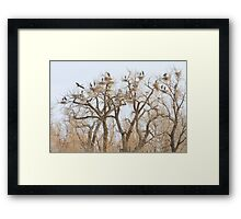 Thats A Lot Of Heron  Framed Print
