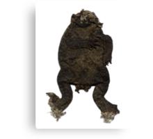 Trash the Frog Canvas Print