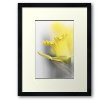 Ready or not, here I come... Framed Print
