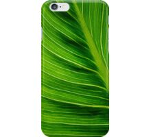 Veins in a Leaf iPhone Case/Skin