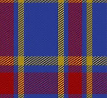 01336 UEFA (Glasgow) Tartan Fabric Print Iphone Case by Detnecs2013